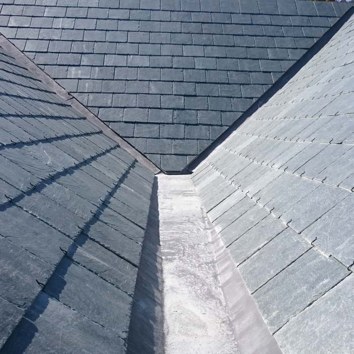 Roof Gulley